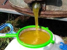 Мёд Курганский-Зауральский